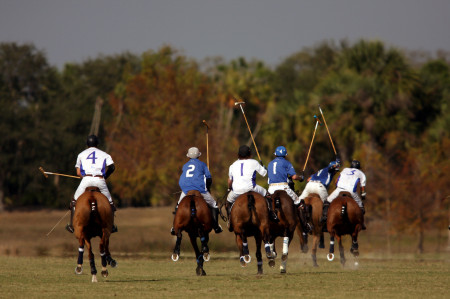 Polo, Wellington, Florida